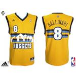 Denver Nuggets Gallinari Jersey