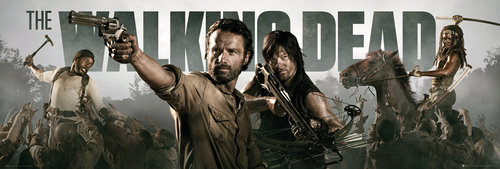 The Walking Dead Banner Door Poster