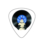 "Fender ""Heavy"" Guitar Pick - Random!"