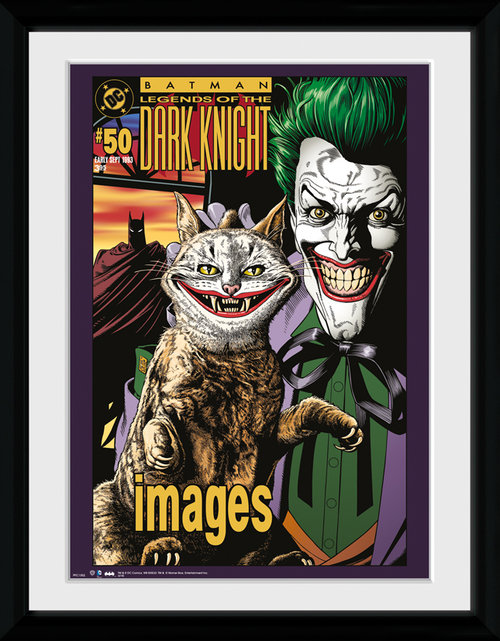 Batman Comic Joker Cat Framed Collector Print