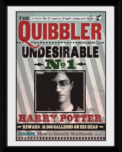 Harry Potter The Quibbler Framed Collector Print