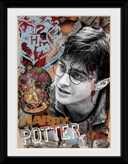 Harry Potter Harry Potter Framed Collector Print