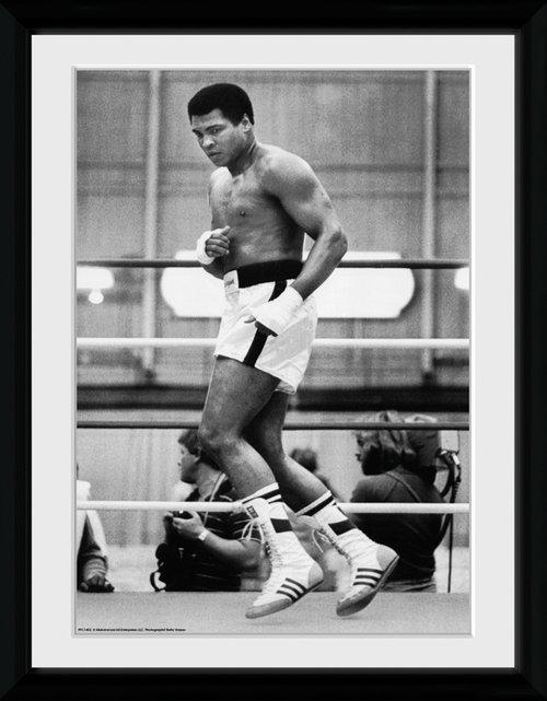 muhammad ali training framed collector print - Muhammad Ali Framed Pictures