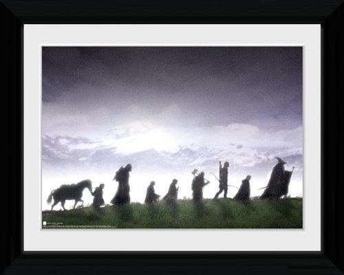 Lord of the Rings Fellowship Collector Print