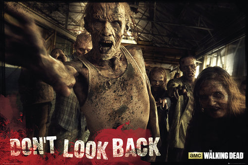 The Walking Dead Zombies Maxi Poster