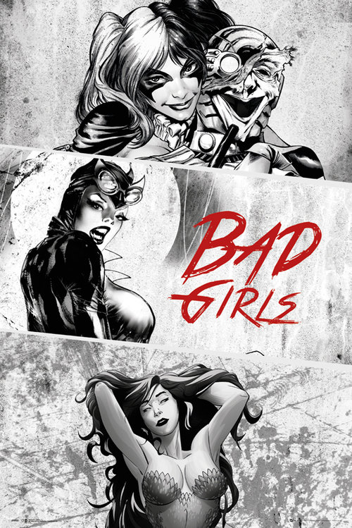 DC Comics Badgirls Black and White Maxi Poster
