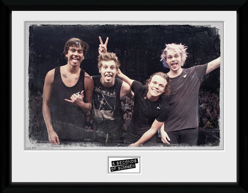 5 Seconds of Summer Live Pose Framed Collector Print