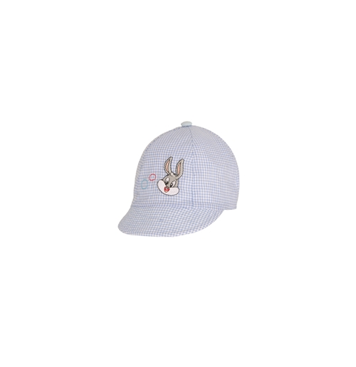 Baby Looney Tunes Hat 140014