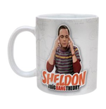 Big Bang Theory Mug 140899