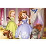 Sofia the First Puzzles 143026
