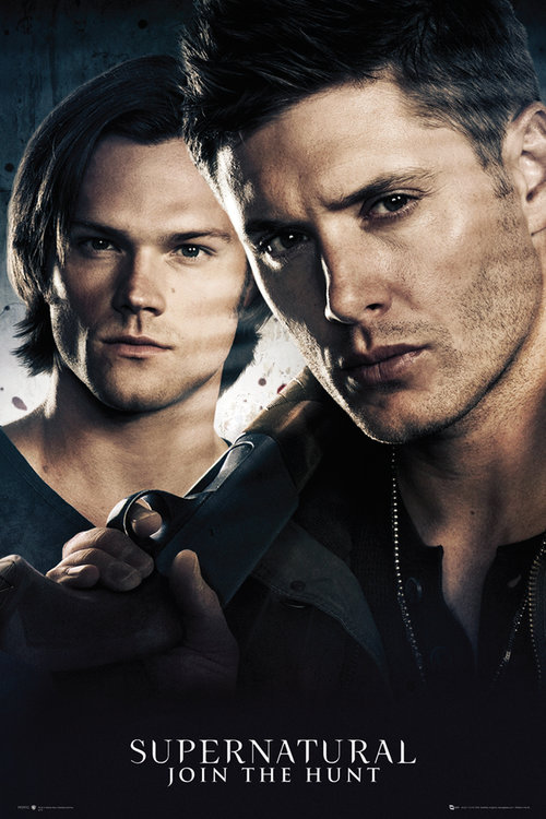 Supernatural Brothers Maxi Poster