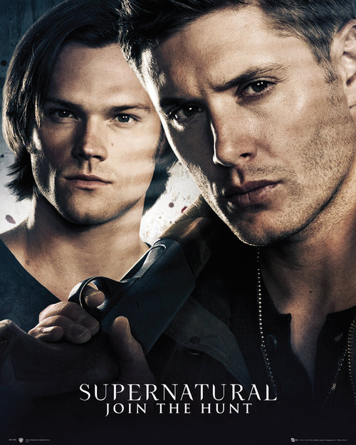 Supernatural Brothers Mini Poster