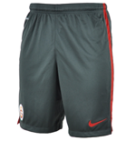 2015-2016 Galatasaray Nike Longer Knit Shorts (Anthracite)