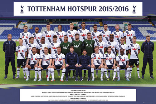 Tottenham Hotspur Team Photo 15/16 Maxi Poster
