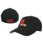 Green Day Hat 180310