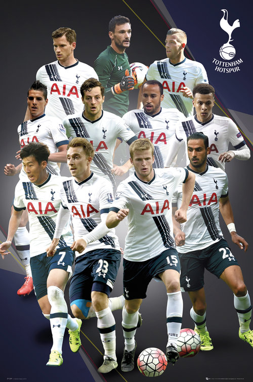 Tottenham Hotspur Players 15 16 Maxi Poster For Only 163 4