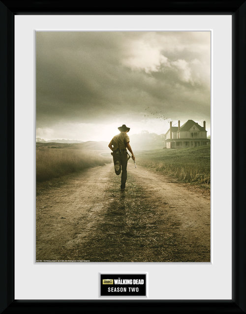 The Walking Dead Season 2 Framed Collector Print