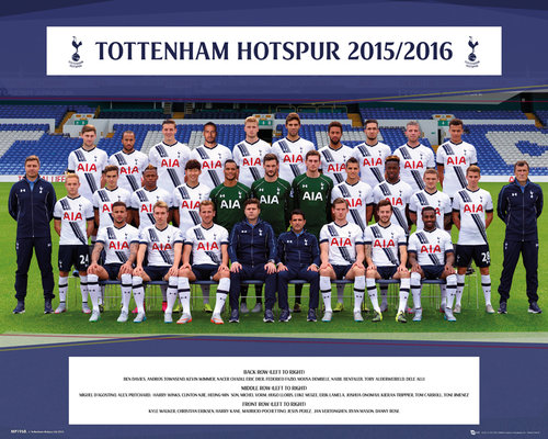 Tottenham Hotspur Team Photo 15/16 Mini Poster