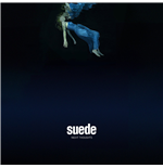 Vynil Suede - Night Thoughts (2 Lp)