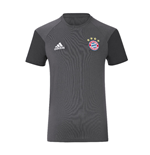 2016-2017 Bayern Munich Adidas Training Tee (Granite)