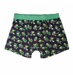 The Legend of Zelda Boxer shorts 213839