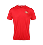 Official Arsenal Training T-Shirt (Red)
