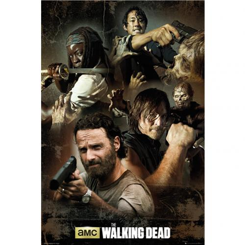 The Walking Dead Poster Group 216
