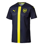 2016-2017 Arsenal Puma Stadium Jersey (Peacot-Yellow)