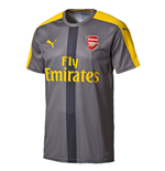 2016-2017 Arsenal Puma Stadium Jersey (Grey)