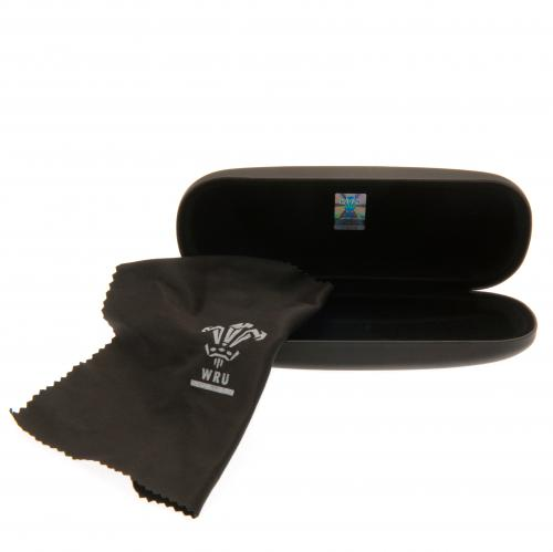 Wales R.U. Glasses Case