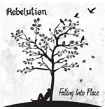 Vynil Rebelution - Falling Into Place