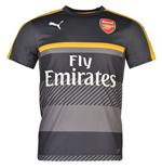 2016-2017 Arsenal Puma Training Jersey (Ebony)
