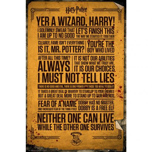 Official Harry Potter Poster Quotes 263 Buy Online On Offer