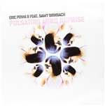 Vynil Eric Powa B Feat Birnbach, Sam - Pulsating Mind Reprise