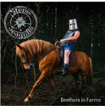 Vynil Steve'N'Seagulls - Brothers In Farms (2 Lp)
