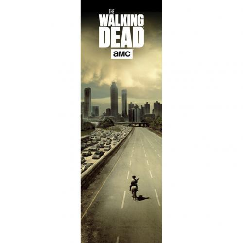 The Walking Dead Door Poster City 322