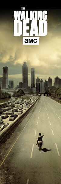 THE WALKING DEAD City Door Poster