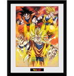 Dragon ball Frame 252601