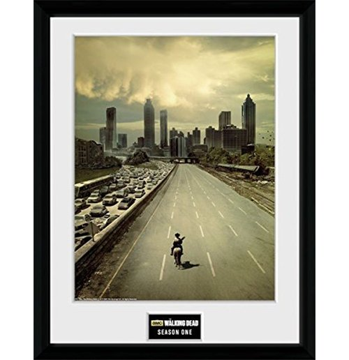 Official The Walking Dead Frame 252622 Buy Online On Offer