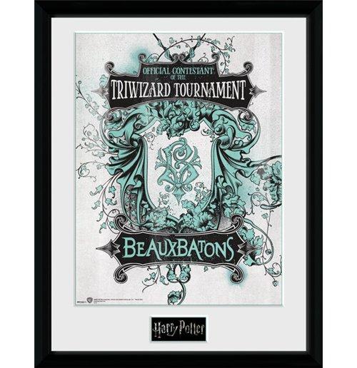 Harry Potter Frame 252674 for only £ 18.54 at MerchandisingPlaza UK