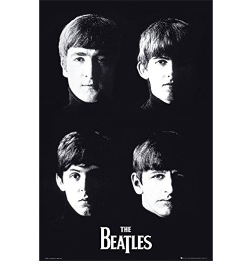 The Beatles Poster 253181