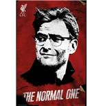 Liverpool FC Poster 254327