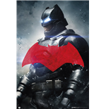 Batman vs Superman Poster 255182