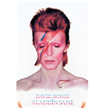 David Bowie Poster 255199