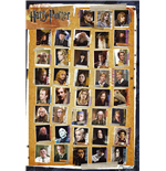 Harry Potter Poster 255303