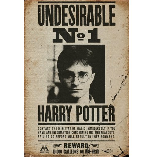 Harry Potter Poster 255305