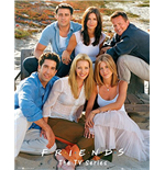 Friends Poster 255307