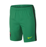 2016-2017 Barcelona Home Nike Goalkeeper Shorts (Lucid Green)