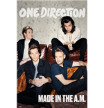 One Direction Poster 259963