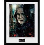 Harry Potter Print 261366